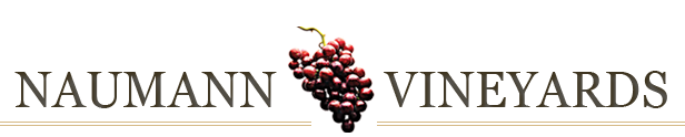 Naumann_Vineyards_masthead